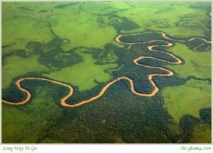 El río Beni recorre su camino sinuoso.