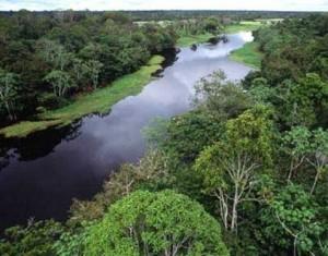 El río Tuichi corre rodeado por la selva.